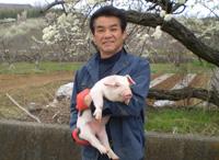 特産第2号甲州信玄豚 生産者の柿島さん